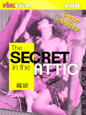 The Secret in the Attic [DOWNLOAD TO OWN]