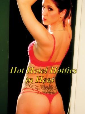 Hot Hotel Hotties In Heat [DOWNLOAD TO OWN]